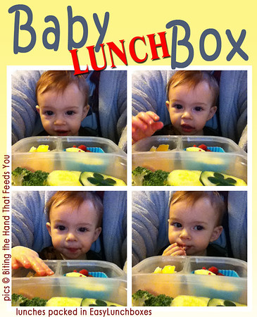 Baby Lunch Box