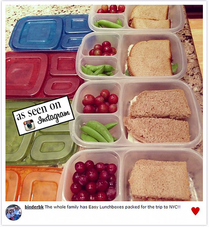 Lunches packed and ready to go