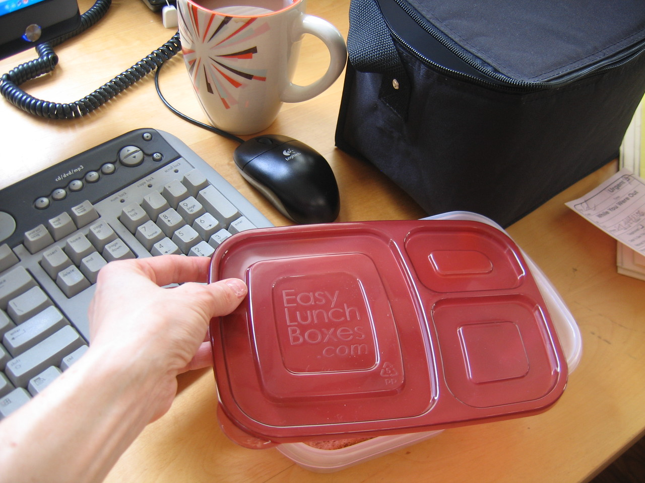 Hi Res EasyLunchboxes are great for work!