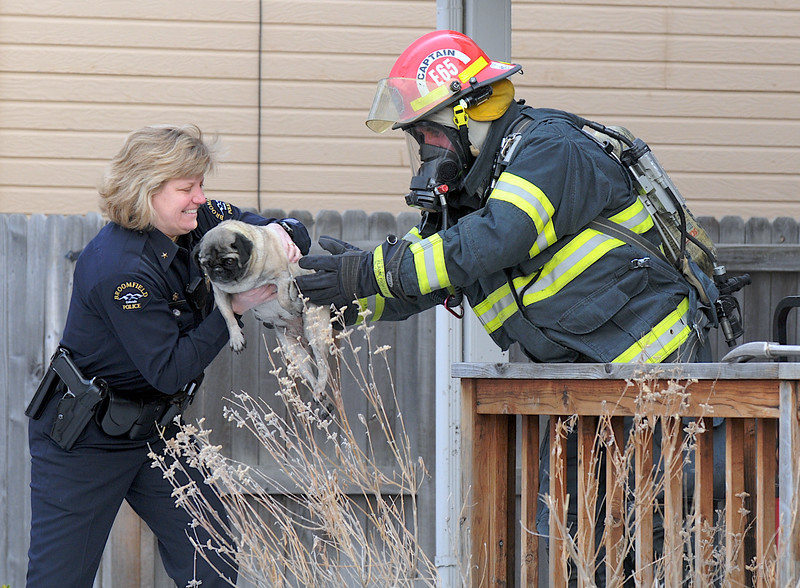 BE0311FIRE01A.jpg BE0311FIRE01A<br /> Broomfield Police commander Linda Haines takes a dog from North Metro Fire Rescue Capt. Rich Randall rescued by firefighters at a house fire at 308 Mulberry Circle on Saturday.<br /> No reports of injuries the cause of the fire  is under investigation.<br /> March 6, 2010<br /> Staff photo/David R. Jennings