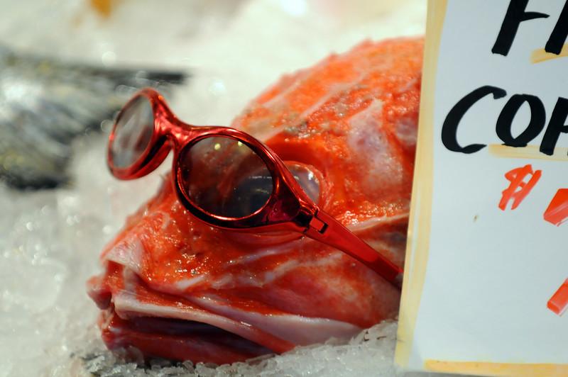 Rockfish Chillin'