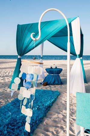 The Best Wedding - Punta Cana 2015