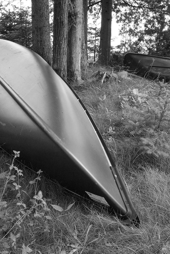 Canoes1.jpg