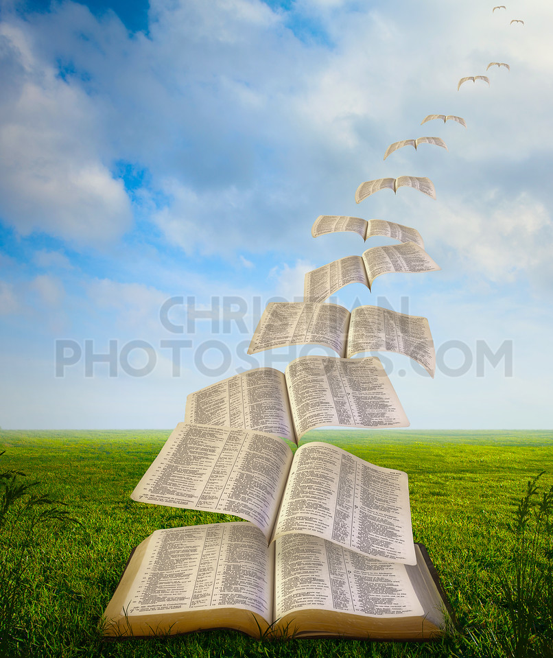 Pages flying away