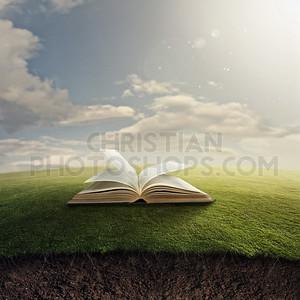 Bible on grass.