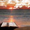 Open Bible at beach