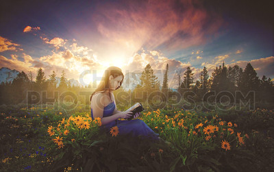 Woman studying in a flowery meadow