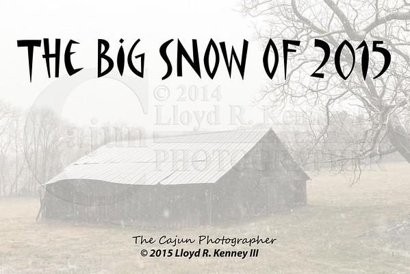 The Big Snow of 2015 - 8 inches Trenton, Georgia.