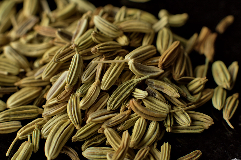 Fennel Seeds - 32mm Ring<br /> Alpharetta, GA, 01/18/2021,<br /> This work is licensed under a Creative Commons Attribution-<br /> NonCommercial 4.0 International License.