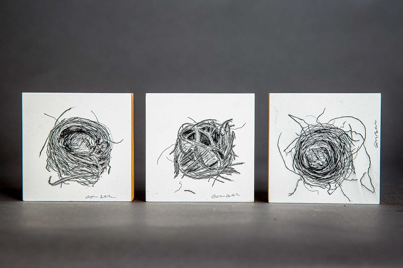 The-Bird-Nest-Artwork-9169