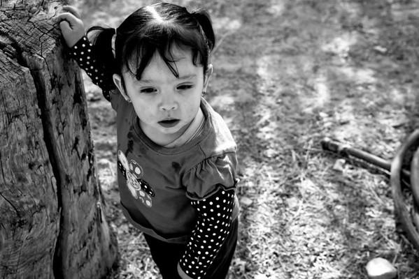 The Precious Little Girl