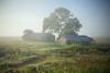 Farmscape #17