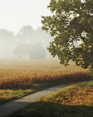 Farmscape #14