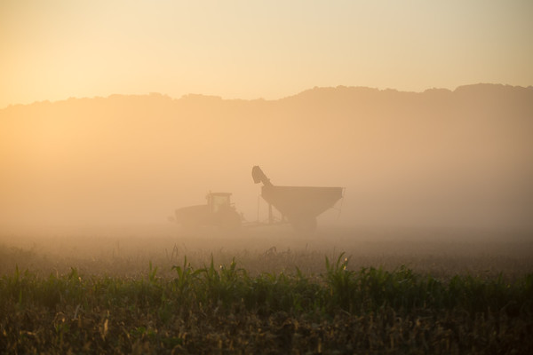 Tractor in Morning Mist