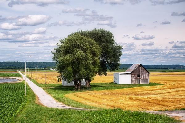 Farmscape #1