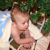 Nolan and his woobie under the tree