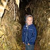 Bravely in the corn maze after dark