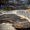 A big rock