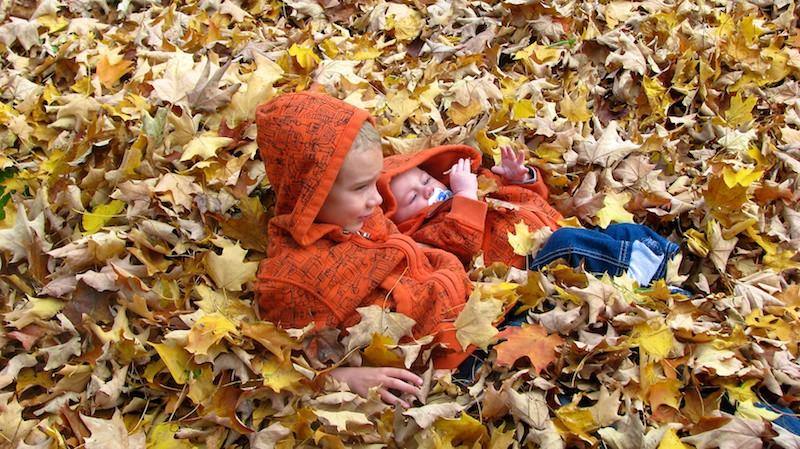 Brothers in the pile of leaves