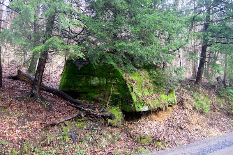 A very large moss covered rock