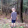 Koben looking out into the woods