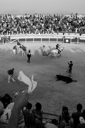 Bull Fight, Saintes-Maries-de la Mer, Camargue, South France