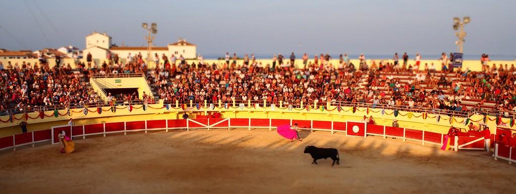 Bull Fight, Saintes-Maries-de la Mer, Camargue, South France