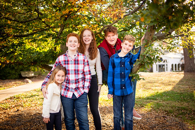 Kids at Tree-3422