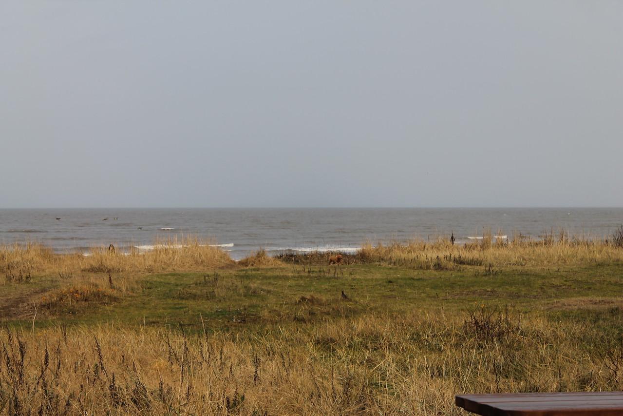 Coast 6