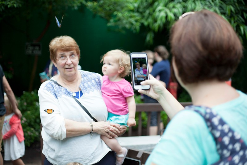 Chriss Moeser, 69, of Harvard keeps a wary eye on the butterfly hovering just in front of her as she poses for a photo. SUN/Chris Lisinski