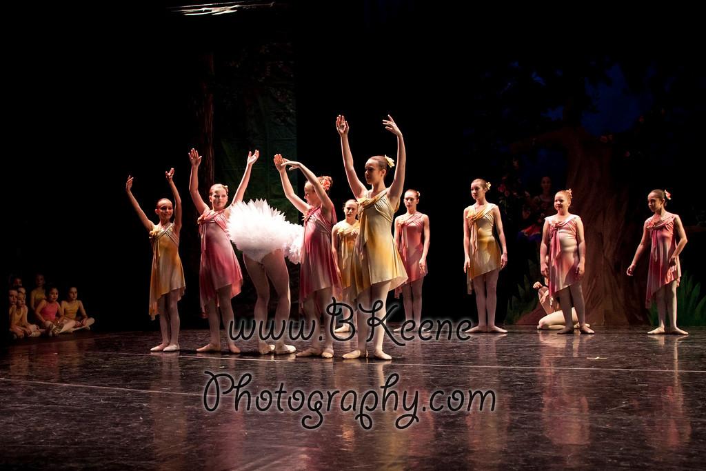DRESSR_APRIL_BALLET SPRING2011_BK-519