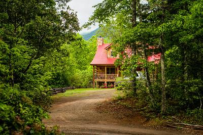 Cabin Front Yard