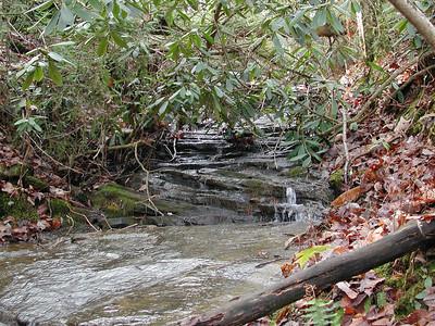 Branch Near Bandy Creek