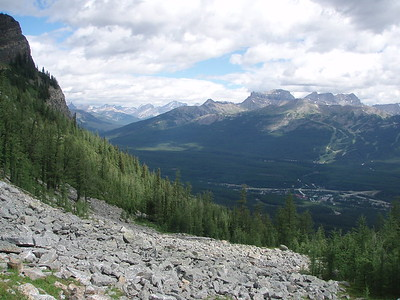 Avalanche paths grants a view of Bow Valley.