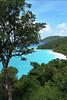 Trunk Bay Overlook (St John)