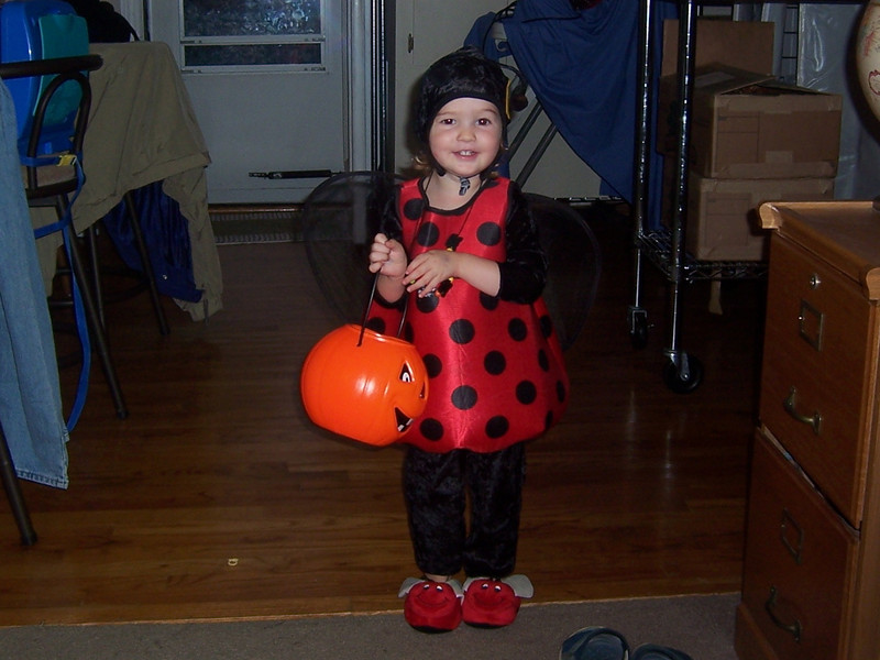 Little ladybug ready to go!