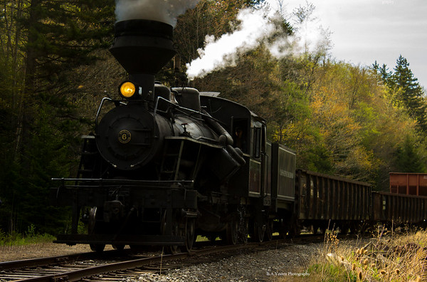The Cass Scenic Railroad