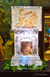 Must Love Cats Fundraiser for CAT Network