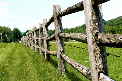 Fence Line of Cattle Farm, RTE 7 Kent Ct.