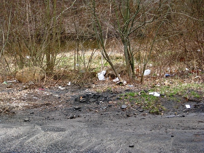 Garbagr town USA.. see the trash? see the river running behind it? where will all that trash go? Why, into the river of course!