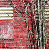 Dead Factory Windows and Budding Trees - Gloversville, NY