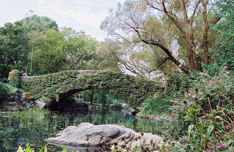 Central Park Bridge - New York, NY