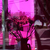 Store Window As Seen Through A Colored Glass Door - Los Angeles