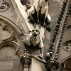 Gargoyles - Notre Dame