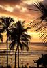 WaikikiSunset_101319-005