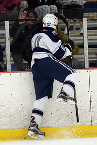 #10, Sean Rogers celebrates a goal scored with Manasquan fans in the game played against Freehold at the Jersey Shore Arena on 01/16/2019. (STEVE WEXLER/THE COAST STAR(.