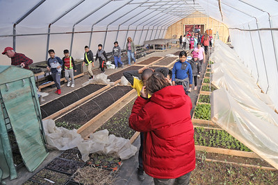 Students from local school districts visited the Allaire Community Farm located in Wall Township to take part in the SUSHI initiative which pairs students from affluent and disadvantaged towns to learn about gardening, nutrition and each other. (MARK R. SULLIVAN /THE COAST STAR)