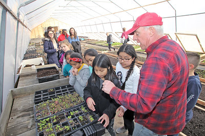 Students from local school districts visited the Allaire Community Farm located in Wall Township to take part in the SUSHI initiative which pairs students from affluent and disadvantaged towns to learn about gardening, nutrition and each other. Here farm owner Sean Burney (right) shows children how to work with seedlings in the hot house. (MARK R. SULLIVAN /THE COAST STAR)