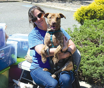 Wall Coldwell Banker Pet Adoption 5/6/2017: Tammy Boland representing Pick Your Paw with Skylar (Pitbull mix)