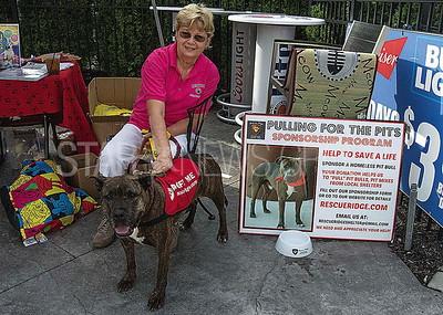 volunteer ruth ziznewski and faith, a mastiff mix who's up for adoption.